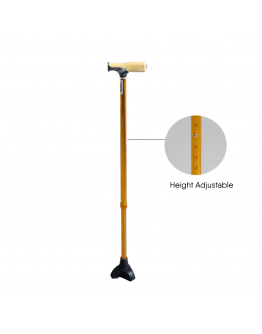 FS9208L Walking Stick